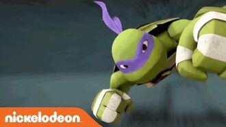 Teenage Mutant Ninja Turtles Meet Donatello Nick