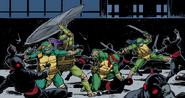 Turtles vs karaisfoot