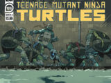 Teenage Mutant Ninja Turtles issue 106 (IDW)