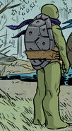 Donatello's grey carapace