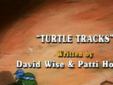 Turtle Tracks (1987 TV series)