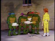 2272450-turtles140