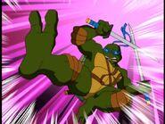 2509304-turtle272