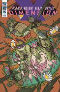 TMNT- Dimension X -5 Alternate Cover by Craig Rousseau