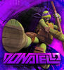 Tmnt-332x363-donatello-large