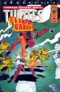 Tmnt flaming carrot 4