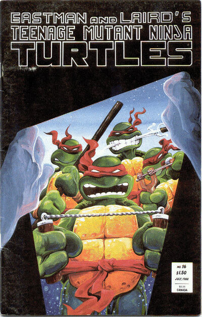 A Teenage Mutant Ninja Turtles Story