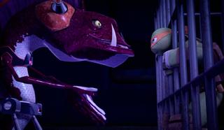 Meet-mondo-gecko 05