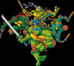 Turtles 2003