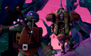 Mikey-and-Leo--19-TMNT