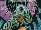 Teenage Mutant Ninja Turtles issue 20 (Image)
