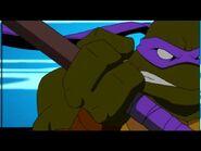 2500569-turtle248