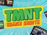 TMNT Summer Shorts