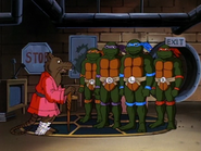 Divide and conquer 83 - splinter and turtles