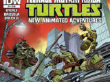 Teenage Mutant Ninja Turtles: New Animated Adventures issue 1
