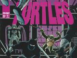 Teenage Mutant Ninja Turtles issue 23 (Image)