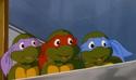 Remember baby turtles by xxcareysshadowxx-d6f5ir3