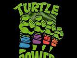 Turtle Power (catchphrase)