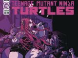 Teenage Mutant Ninja Turtles issue 105 (IDW)