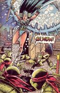2024145-tmnt 08 first comics book iii 043