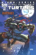 Idw - raphael variant cover 1