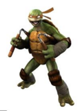 Michelangelo (Out of the Shadows)