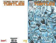 TMNT 2014 Annual cover RE Jetpack 1
