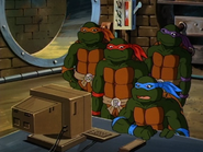 Divide and conquer 24 - turtles