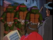 The return of dregg 50 - turtles