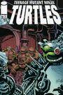 2521019-turtle1446