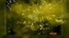 Schermafbeelding 2013-03-02 om 01.53.47