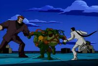 TMNT Nobody Touch and Go