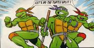 Turtle split
