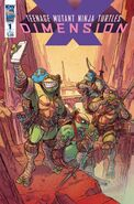 TMNT- Dimension X -1 Alternate Cover by Pablo Tunica