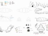 Kraathatrogon/Gallery