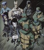 IDW Turtles PDrags