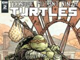 Michelangelo (IDW Macro-Series issue)