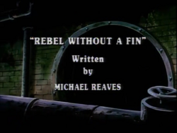 Rebel Without a Fin Title Card