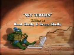 Sky Turtles Title Card