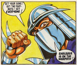 Shredder fleetway