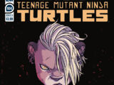 Teenage Mutant Ninja Turtles issue 104 (IDW)