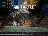 Air Turtle