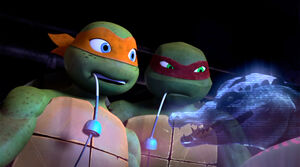 Mikey-and-Raph-TMNT-52