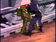 Raphael (S&S)