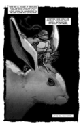 Adventures in Bunnysitting frontispiece