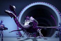 12 Dracodroid