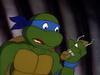 ROFT Leo turtle com