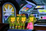 Turtleoid1