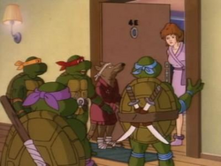 Turtles, Splinter, April (ATAR)