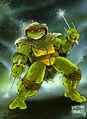2509179-turtle122.jpg